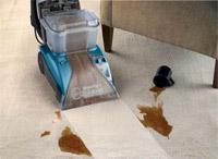 real carpet cleaner