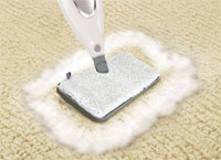 mop carpet cleaners